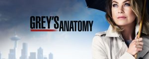 Banner Grey's Anatomy